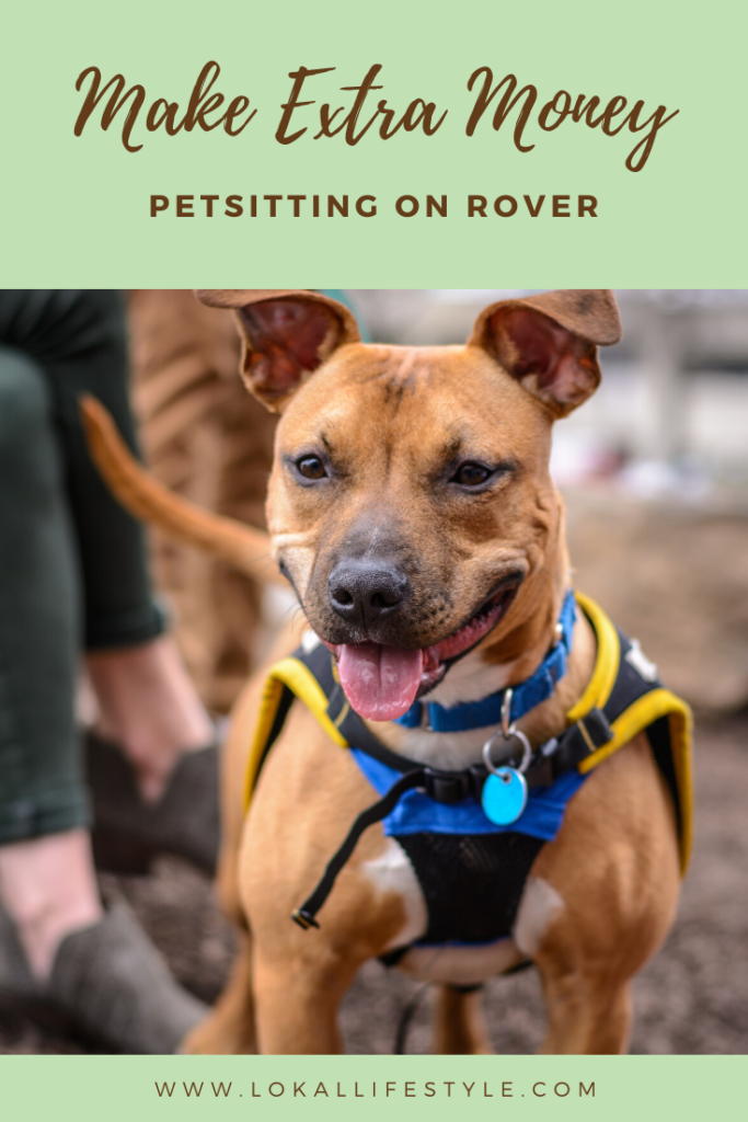 Make Extra Money Petsitting on Rover